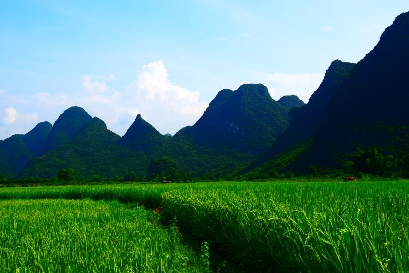 Chengdu_Guilin_Suzhou_01 481
