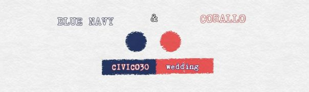 navy and coral palette - civico30.net