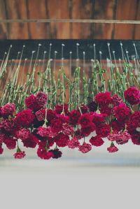 marsala fiori